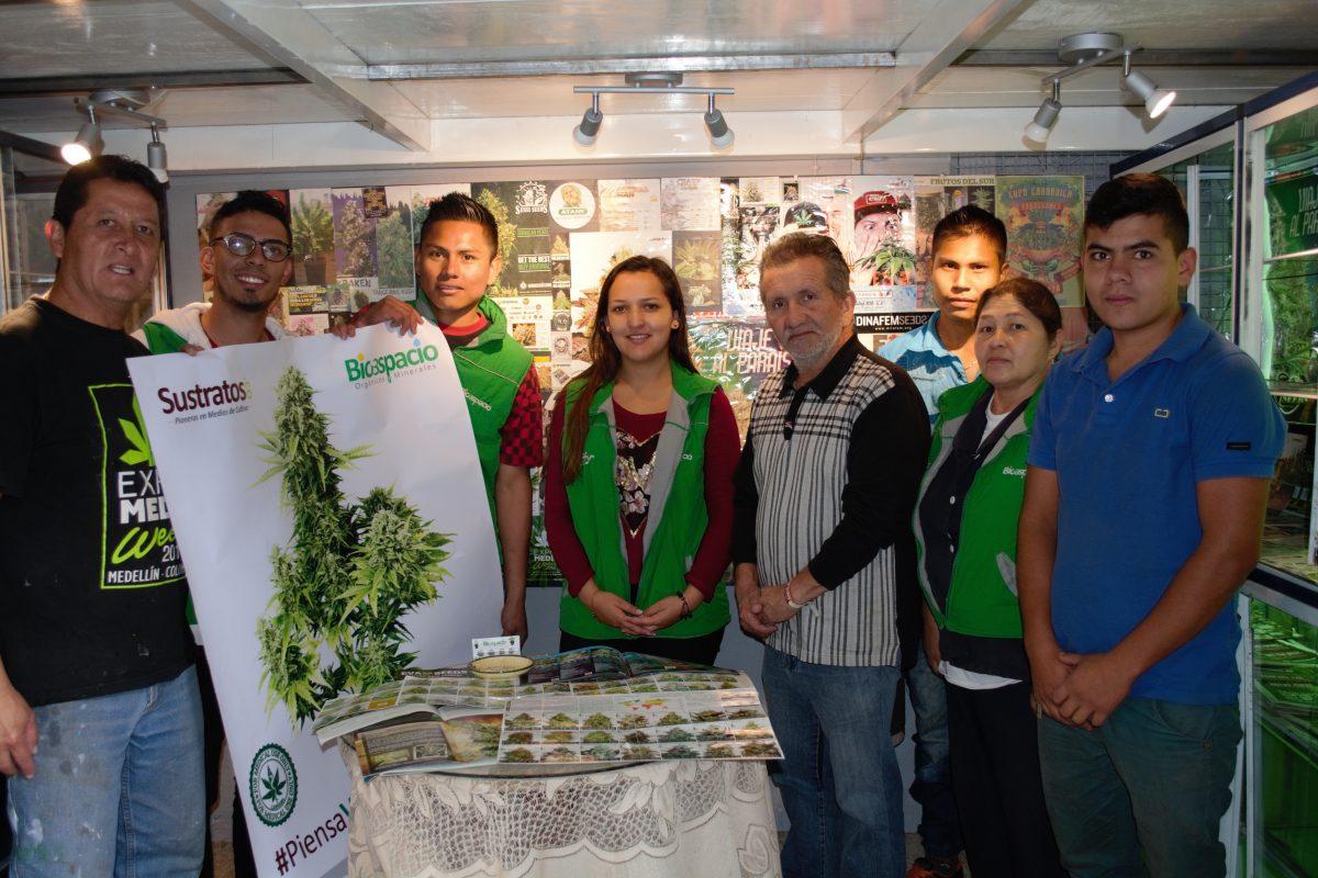 Comercio de marihuana medicinal.